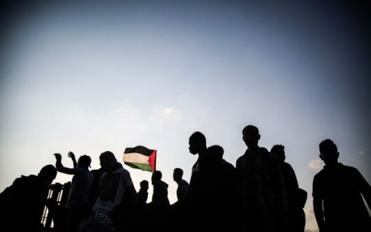 Joves d'Esquerra Verda reitera la seva solidaritat amb el poble palestí